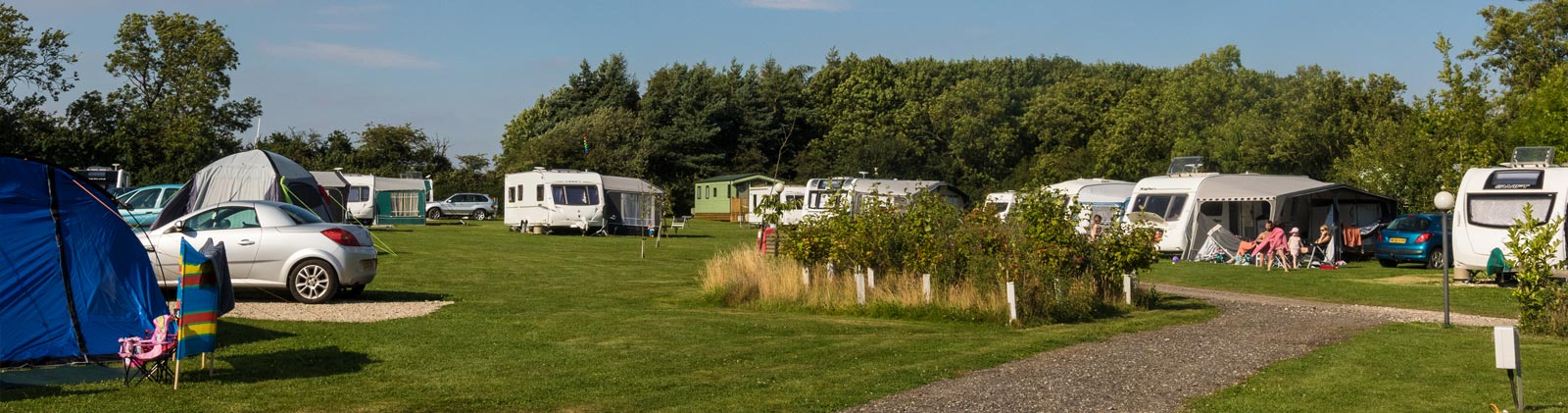 York Meadows Camping and Caravan Park pitches